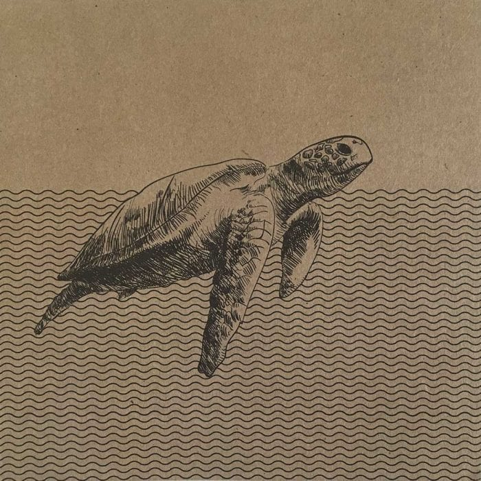 Turtle eco greetings card